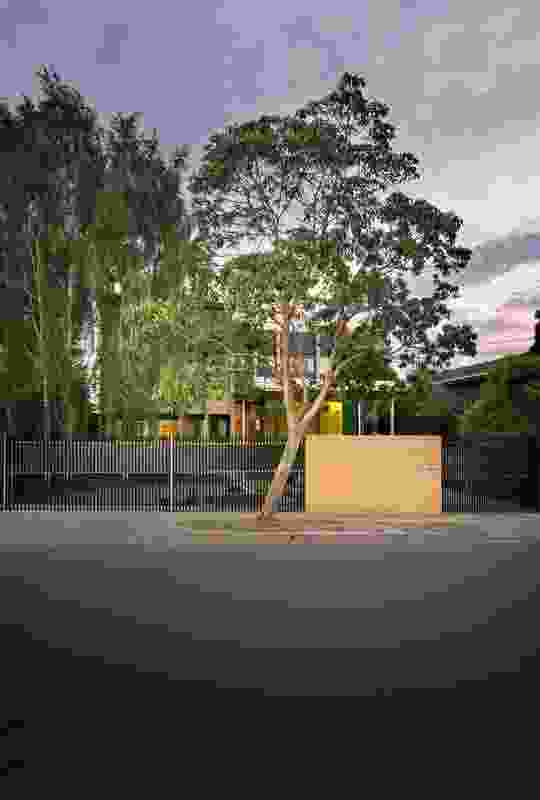 Saving Grace by Multiplicity in conjunction with Mel Odgen Landscapes.