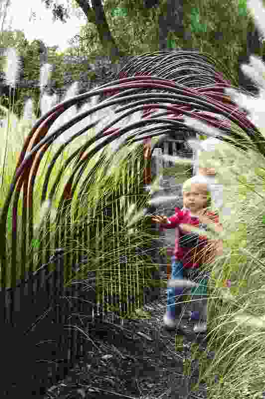 A tunnel of waving grasses, scaled to child-height invites the zoo's younger visitors to explore and immerse themelves in animal life.