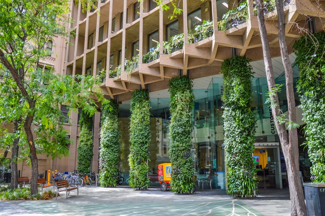 Colonel Light Centre Forecourt Green Wall by City of Adelaide, Design & Strategy.