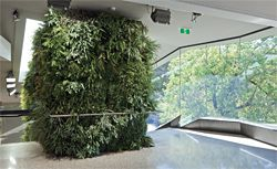The green wall on the stair leading to the long gallery on the first floor of the entry building.
