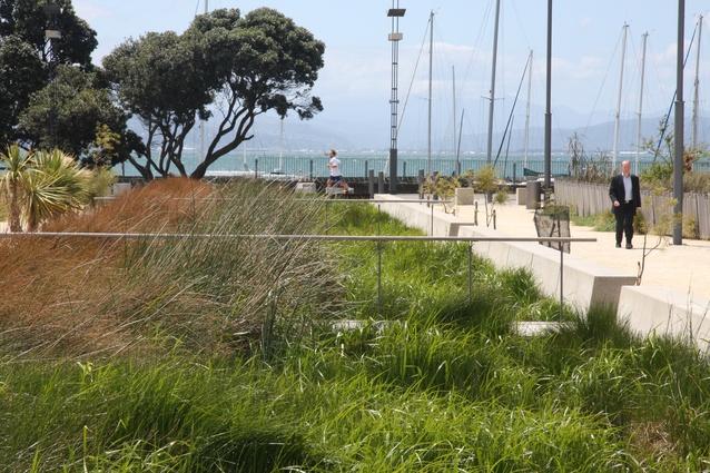 Waitangi Park, Wraight + Associates.
