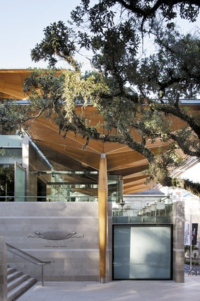 The sculptural canopy shelters the