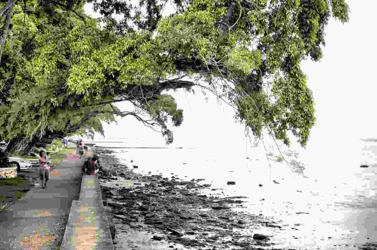 A waterfront walk in Suva, Fiji, 2012.