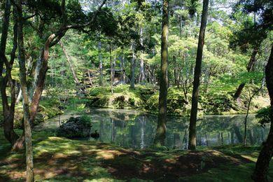 The Saiho-Ji moss garden in Kyoto, Japan.