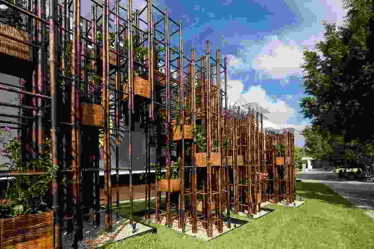 The 2016 Fugitive Structures pavilion, Green Ladder, by Vo Trong Nghia Architects.