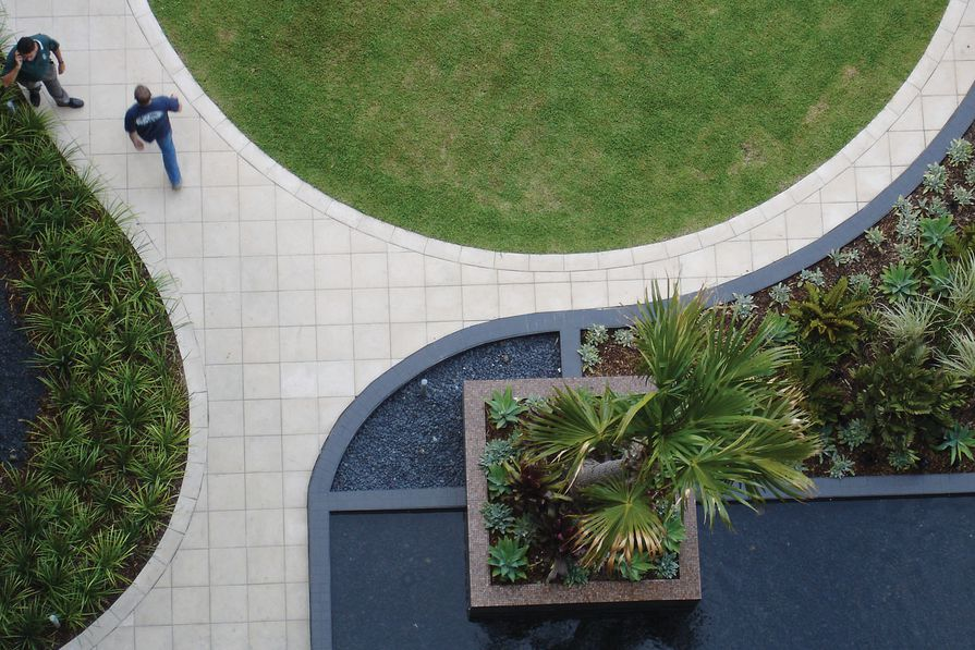 Part of the Monument residential site in Sydney, this garden serves as a bold geometric form 