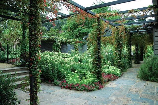 2011 houses awards celebrating residential landscapes for Residential landscape architects melbourne