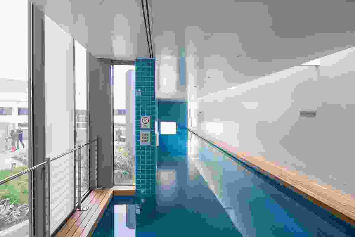 Tryptich apartments lap pool.