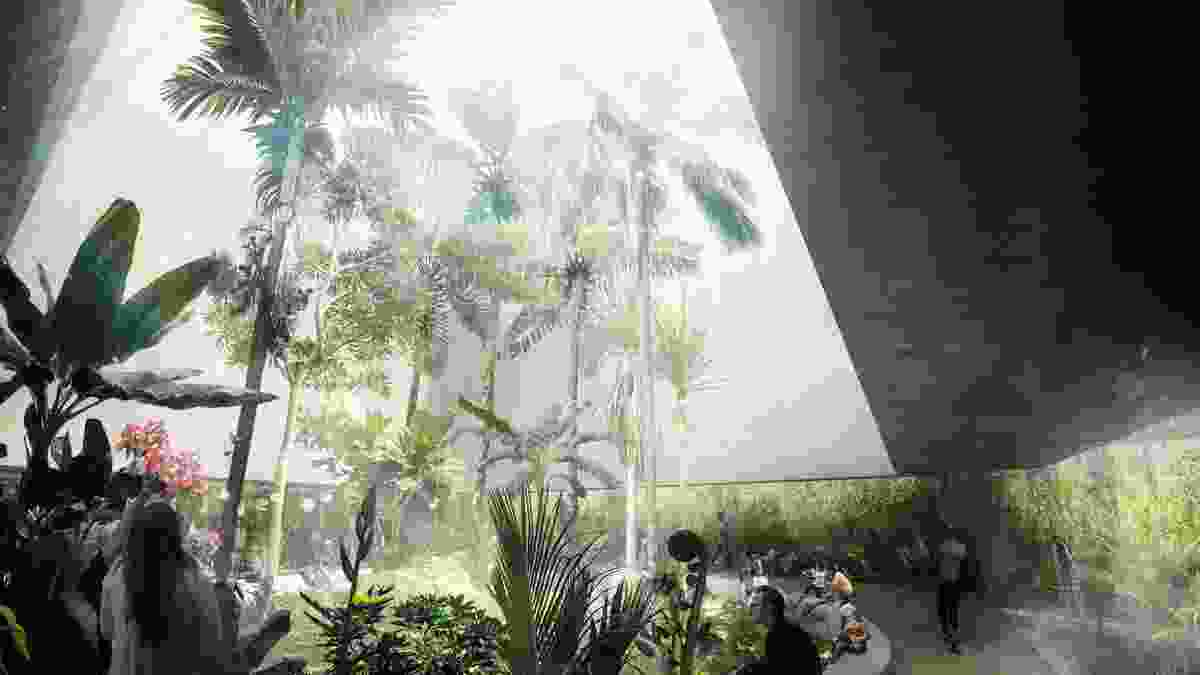 CHROFI, McGregor Coxall and Atelier Ten's design concept for the Ian Potter National Conservatory features a void to the sky and transparent and translucent layers of skin.