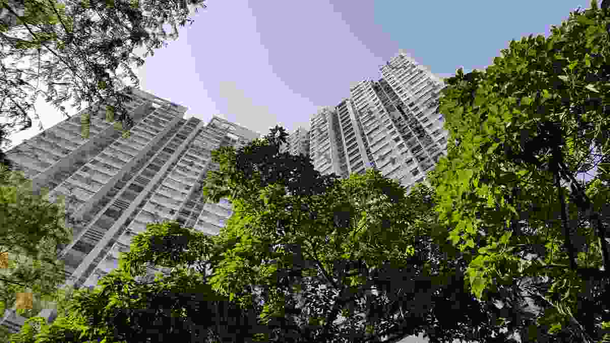 The 2019 Urban Tropicality Conference, running from 5 to 8 December at the University of Queensland, brings together leaders in the fields of architecture and design from across the world.