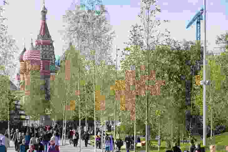 The colourful domes of Moscow's St Basil's Cathedral filtered through a grove of silver birch trees in the city's new Zaryadye Park.