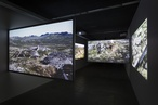 Baracco and Wright design explorable landscape in audiovisual exhibition