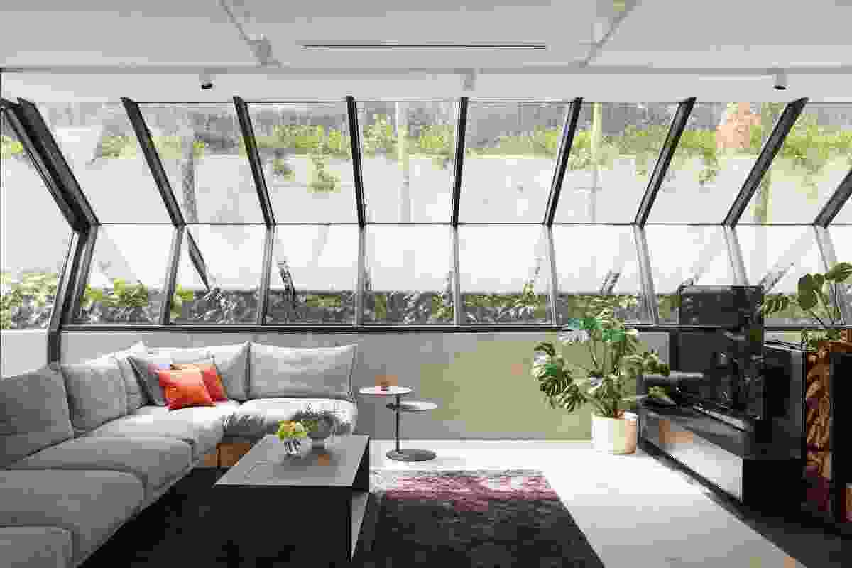 Angled windows in the living room look up to a sliver of rainforest garden and catch morning sun from the east.