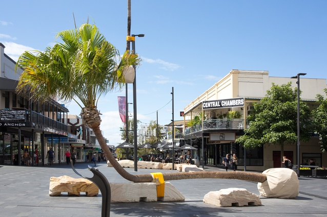 Seats made from living cabbage tree palms form part of the 'Illawarra Placed Landscape' artwork in the Wollongong Crown Street Mall.