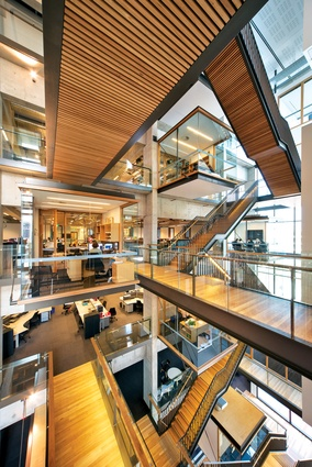 The atrium is activated by serried flights of stairs, walkways and decks.