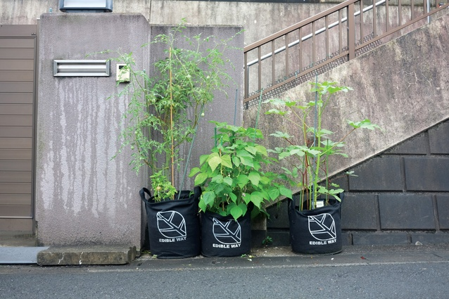 The Edible Way project in Matsudo, Japan uses felt planters to conveniently introduce urban food production to a dense residential neighbourhood.