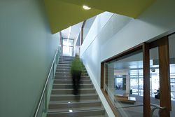 This stairwell is the only extension to the original building, and leads the way to the upper-level courtrooms.