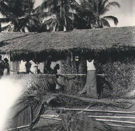 Bamboo and woven coconut-leaf house, Mer, Torres Strait, 1958. Photograph Jeremy Beckett.