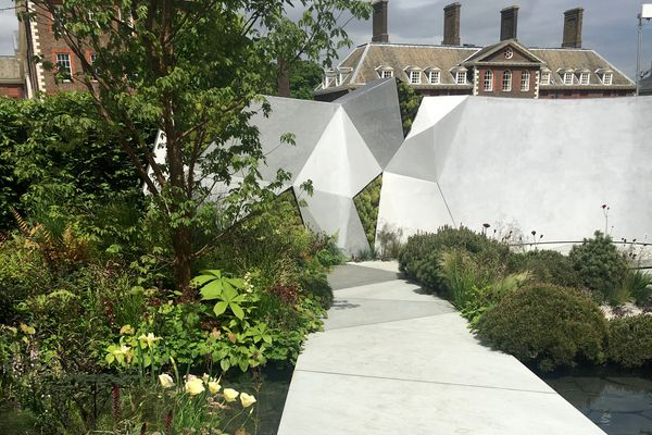 The Jeremy Vine Texture Garden by Matt Keightley with its geometric concrete forms in views framed by dwarf Pinus mugo.