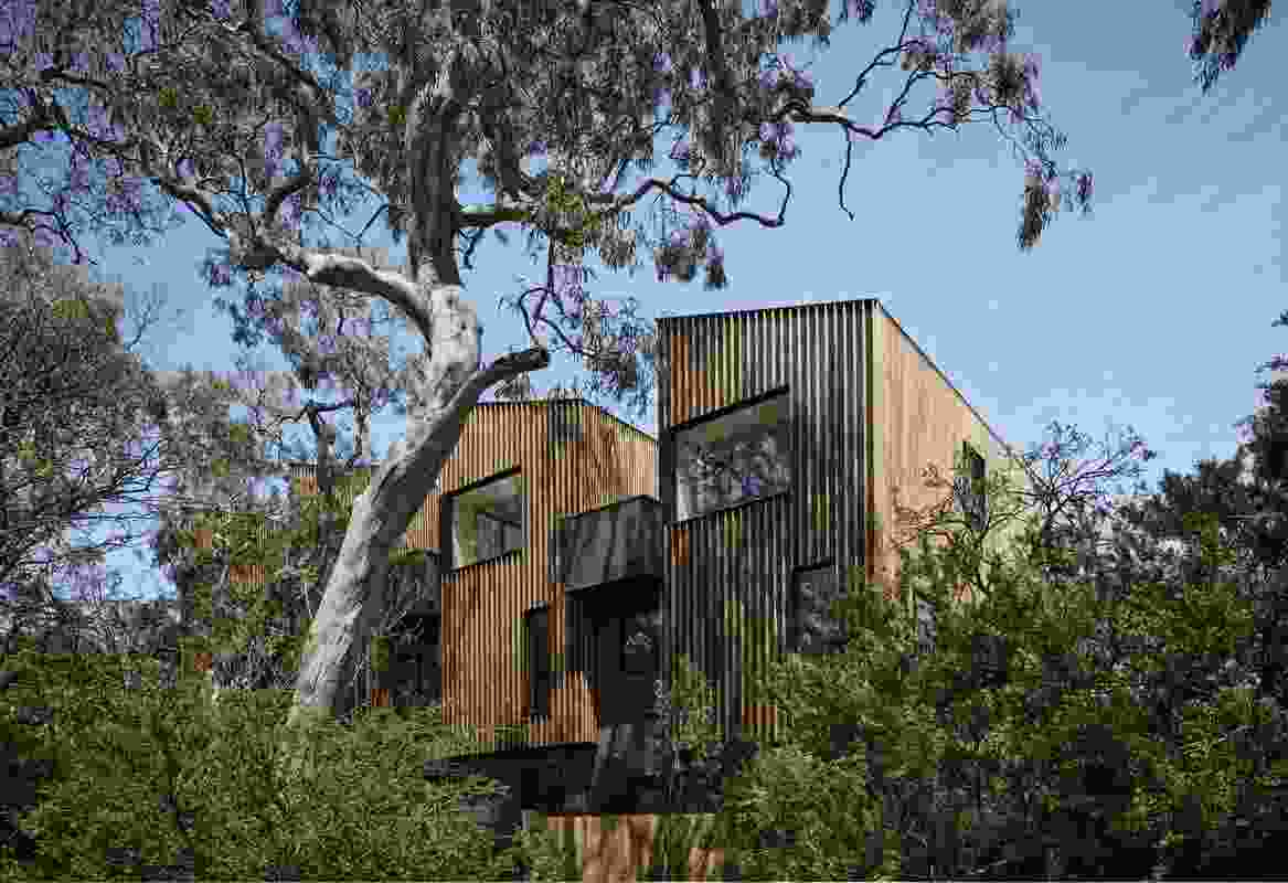 Parkville Townhouses by Fieldwork McAuley.