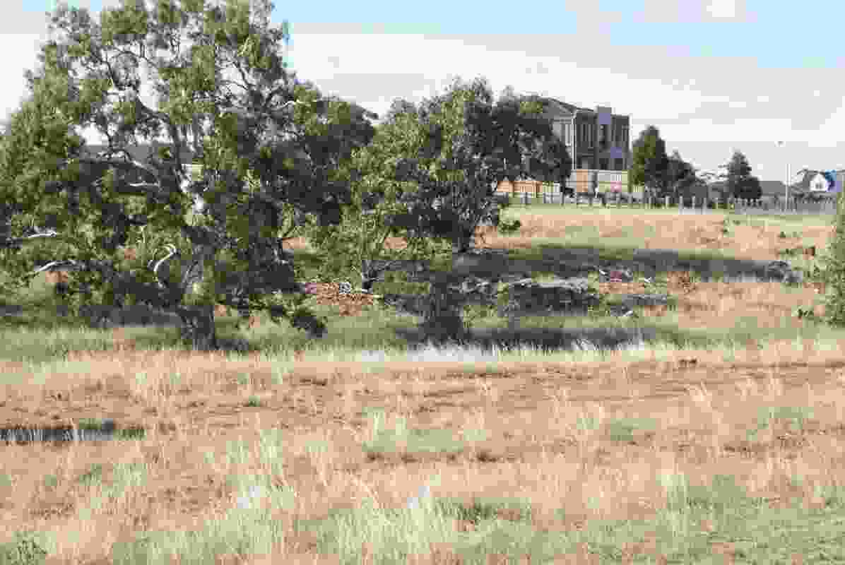 2012 AILA National Landscape Architecture Award: Land Management