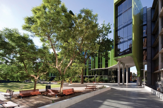 The design of the Lowy Centre has been used to facilitate new links across the campus, including a major pedestrian entrance.