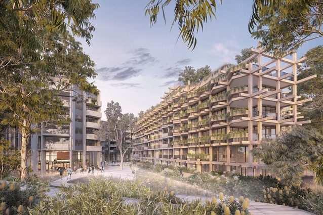 The proposed One Sydney Park development by MHN Design Union, Silvester Fuller and Sue Barnsley Design.