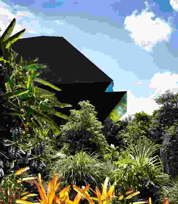 The clam-like form of the house is heavy, yet expressive in the lush tropical landscape.