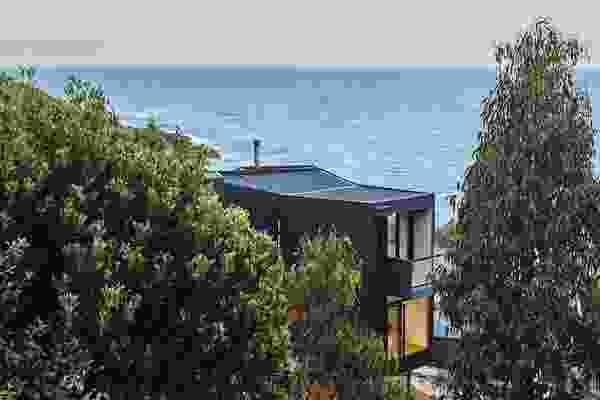 2015年的森林大火烧毁了茂密的植被,这让Y House看到了附近海岸苦乐参半的景色。
