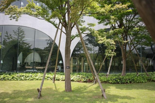 Tama Art University Library by Toyo Ito and Associates.