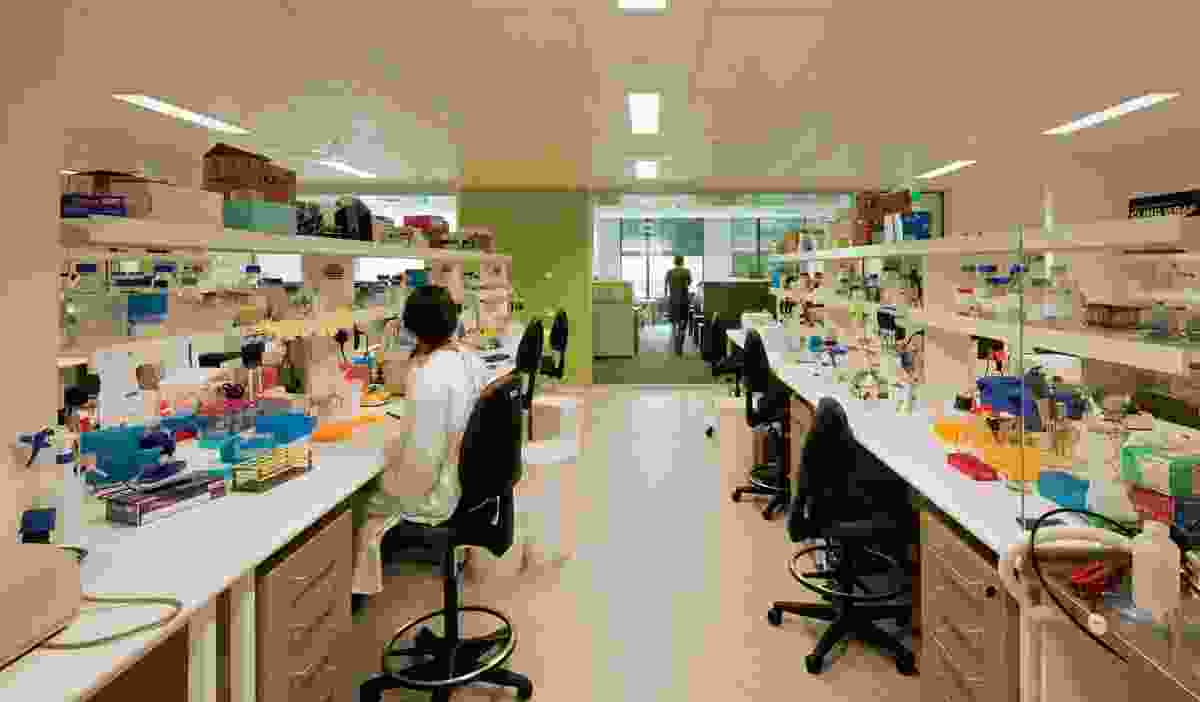 Looking across a laboratory space to the write-up areas, with garden views.