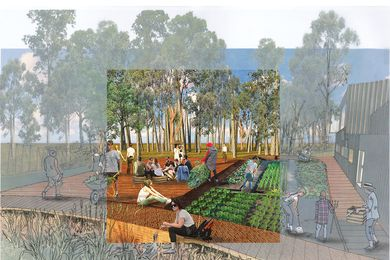 The design aims to reduce depression and loneliness and increase patients' self satisfaction by connecting them to the soil and the process of growing food.