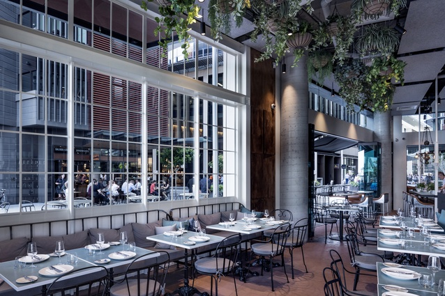 Banksii Vermouth Bar and Bistro by Luchetti Krelle.